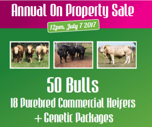 Lucrana 6th Annual On Property Sale
