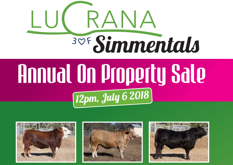 7th Annual Lucrana Simmetals on property sale catalogue